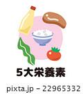 5大栄養素 22965332