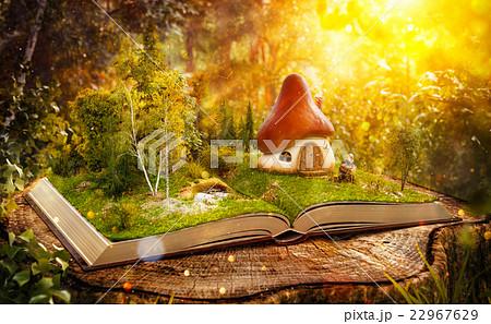 Magical mushroom house 22967629