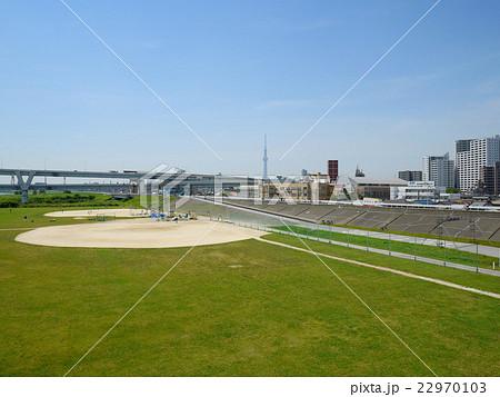 堀切橋から見た荒川日の出緑地野球場(6月)東京都足立区 22970103
