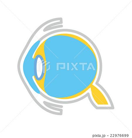 眼球断面図のイラスト素材 [22976699] - PIXTA