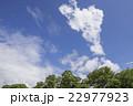 五月晴れの大空 22977923