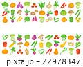 野菜 野菜アイコン ベクターのイラスト 22978347