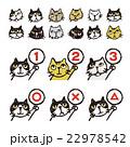 いろいろ猫、顔、順位、まるバツイラスト 22978542