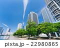 横浜 高層マンション 新緑  22980865