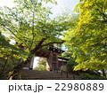 千秋公園 久保田城 表門の写真 22980889
