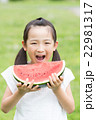 スイカを食べる女の子 22981317