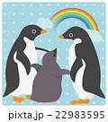 アデリーペンギン 虹 ひなのイラスト 22983595