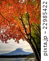 河口湖畔のモミジの紅葉と笠雲を被った富士山 22985422