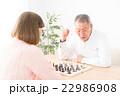 チェス 22986908