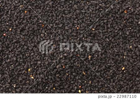 カロンジ ブラッククミン ニジェラシード( 22987110