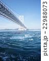 鳴門海峡 大鳴門橋 渦の写真 22988073