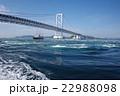 鳴門海峡 大鳴門橋 渦の写真 22988098