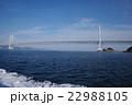 鳴門海峡 大鳴門橋 渦の写真 22988105