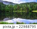 御射鹿池 新緑 池の写真 22988795