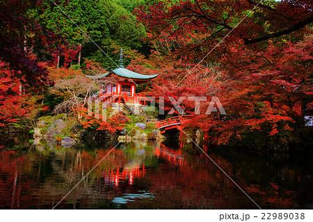 Daigoji Temple with red foliage in Kyoto 22989038