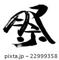 祭 筆文字 文字のイラスト 22999358