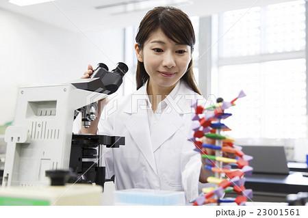 研究 サイエンス 科学 顕微鏡 実験 遺伝子 DNA  23001561
