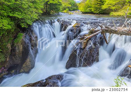 湯川の滝(滝上と石楠花橋の間) 23002754