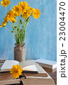 Beautiful spring flowers in a vase with books 23004470