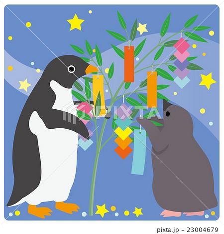アデリーペンギン 七夕 23004679
