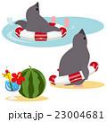 アデリーペンギン バカンス 夏のイラスト 23004681