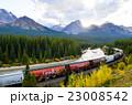 カナディアンロッキー 秋のカナディアン・ロッキーを走る貨物列車 モランツ・カーブにて 23008542