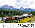 カナディアンロッキー 秋のカナディアン・ロッキーを走る貨物列車 モランツ・カーブにて 23008543