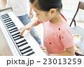 小学生の女の子 23013259