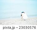 女性 海 バカンスの写真 23030576