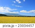 富士山 青空 秋の写真 23034457