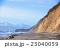 海 海岸 羽伏浦海岸の写真 23040059