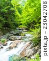 エコイメージ・森林と清流 23042708