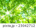 新緑エコイメージ 23042712