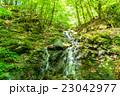 エコイメージ・森林の清流 23042977