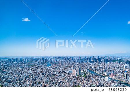 東京都市風景 23043239