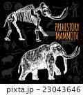 Sketch Hand Drawn Mammoth Chalkboard 23043646