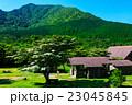 新緑の雲仙 田代原 ヤマボウシ 23045845