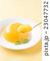 オレンジゼリー 23047732