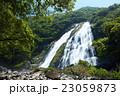 屋久島 大川の滝 23059873