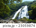 屋久島 大川の滝 23059874