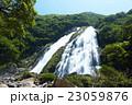 屋久島 大川の滝 23059876