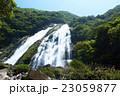 屋久島 大川の滝 23059877