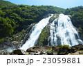 屋久島 大川の滝 23059881
