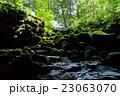 駒門風穴 入り口 溶岩洞窟の写真 23063070