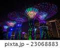 シンガポール ガーデンズ・バイ・ザ・ベイ 夜景 23068883