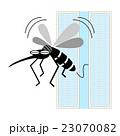 蚊 害虫 侵入のイラスト 23070082