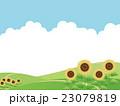 向日葵畑 23079819