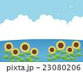 向日葵畑 23080206