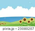 向日葵畑 23080207