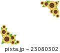 向日葵(フレーム) 23080302